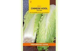 Oranjeband Zaden Chinese kool Granaat