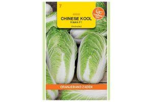 Oranjeband Zaden Chinese kool Kilakin