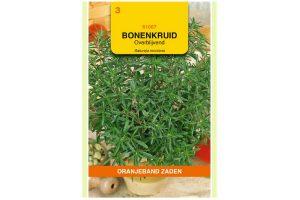 Oranjeband Zaden overblijvend bonenkruid (Satureja montana)