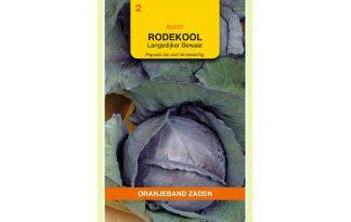 Oranjeband Zaden rode kool Langedijker Bewaar
