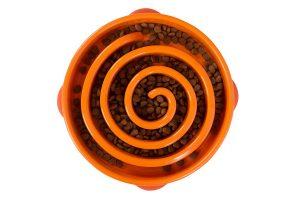 Outward Hound Slo Bowl Feeder Coral