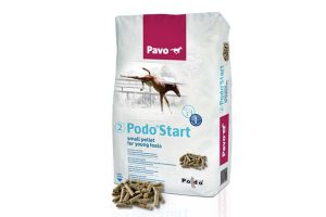 Pavo Podo -2- Start