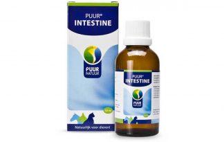 Puur Intestine 50 ml