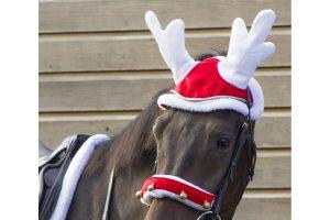 QHP rendiermuts voor paarden