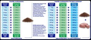 Renske droogvoer verse zalm graanvrij