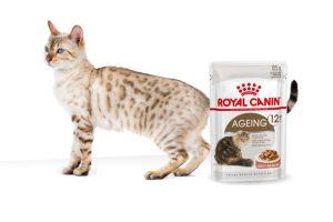 Royal Canin Ageing 12+ Gravy maaltijdzakjes