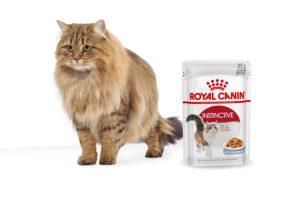 Royal Canin Instinctive Jelly maaltijdzakjes