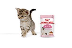 Royal Canin Kitten Gravy maaltijdzakjes