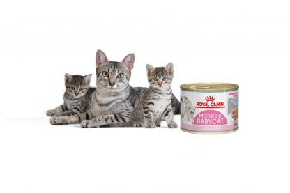 Royal Canin Babycat Instinctive Mousse