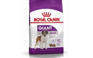 Royal Canin Giant Adult is een volledige brok voor honden met een gewicht > 45 kg.