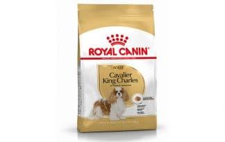 Royal Canin Cavalier King Charles Spaniel Adult is een rasspecifieke voeding voor volwassen Cavalier King Charles Spaniels vanaf 10 maanden