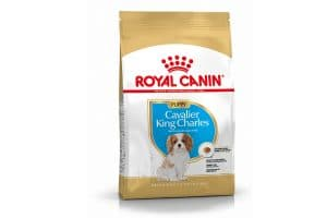 Royal Canin Cavalier King Charles Spaniel Junior is een rasspecifieke voeding voor Cavalier King Charles Spaniel pups tot 10 maanden.
