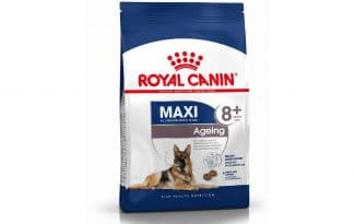 Royal Canin Maxi Ageing 8+ helpt de oudere hond vitaal te blijven vanaf 8 jaar.