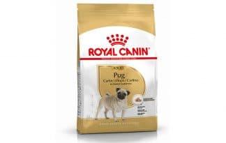 Royal Canin Adult Mopshond (Pug) is een rasspecifieke voeding voor volwassen Mopshonden (Pugs) vanaf 10 maanden.
