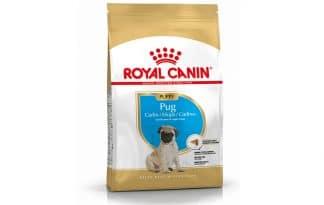 Royal Canin Junior Mopshond (Pug) is een rasspecifieke voeding voor Mopshond (Pug) pups tot 10 maanden.
