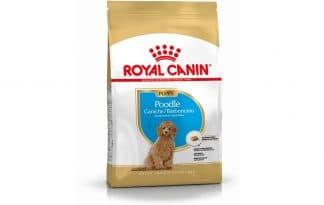 Royal Canin Junior Poodle is een rasspecifieke voeding voor Poodle pups tot 10 maanden.