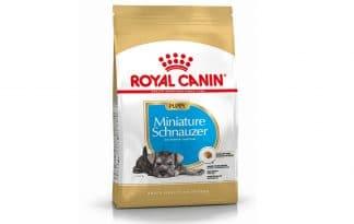 Royal Canin Junior Mini Schnauzer is een rasspecifieke voeding voor Mini Schnauzer pups tot 10 maanden.