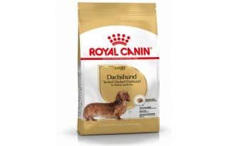 Royal Canin Adult Dachshund / Teckel is een rasspecifieke voeding voor volwassen Dachshunden / Techels vanaf 10 maanden.