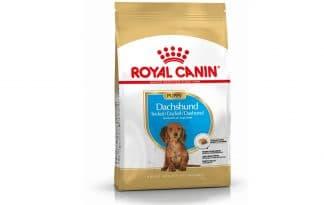 Royal Canin Junior Dachshund / Teckel is een rasspecifieke voeding voor Dachshund / Teckel van 2 tot 10 maanden.