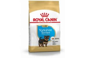 Royal Canin Junior Yorkshire Terrier is een rasspecifieke voeding voor Yorkshire Terrier pups tot 10 maanden.