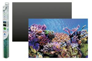 Superfish Deco Poster aquariumachtergrond A