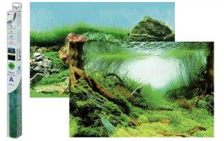 Superfish Deco Poster aquariumachtergrond C