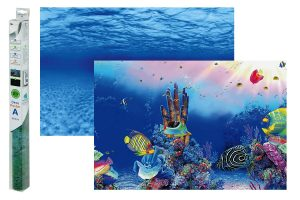 Superfish Deco Poster aquariumachtergrond F