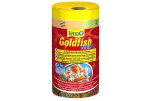 Tetra Goldfish Menu