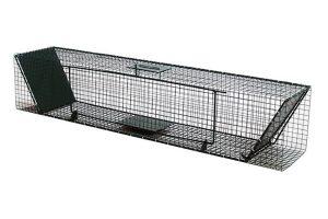 Trapped vangkooi 5000 - 75x30x30cm