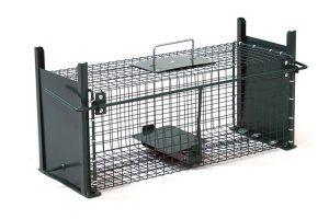 Trapped vangkooi 5067 - 61x21x23cm