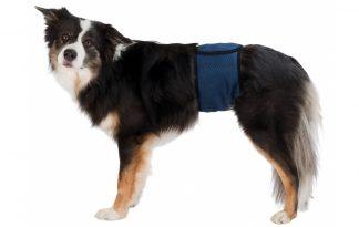 Trixie Belly Bands for Male Dogs beschermbroekje incontinentie reuen