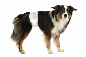 Trixie hondenluiers beschermbroekje incontinentie reuen