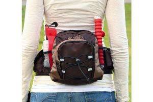 Trixie Multi Belt Hip Bag