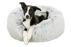 Trixie hondenmand Harvey kussen 50 cm