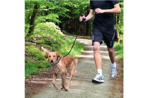 Trixie Jogging Leash