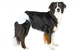 Trixie hondenluier voor teefjes met loopsheid