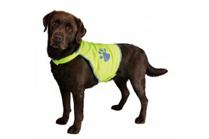 Trixie Safety Vest