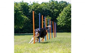 Trixie Dog Activity Agility slalom