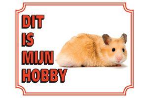 Waakbord hamster