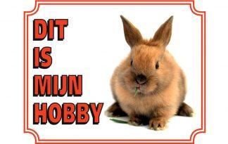 Waakbord konijn
