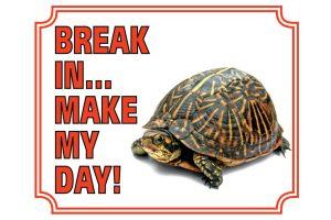 Waakbord schildpad