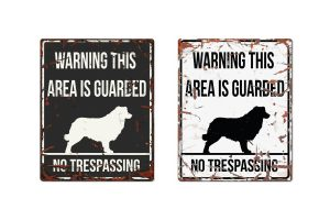 D&D Warning Sign Collie