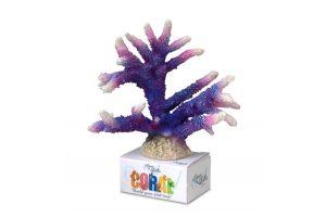 EBI Aqua Della Coral Module L Staghorn Purple