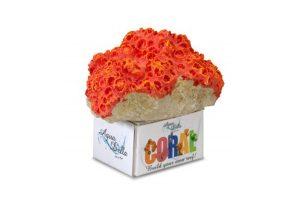 EBI Aqua Della Coral Module M Cup Coral Orange