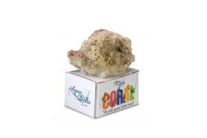 EBI Aqua D'ella Coral Module S Reef Filling