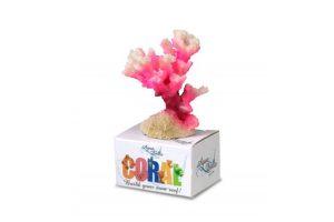 EBI Aqua D'ella Coral Module S Cauliflower Coral White Pink