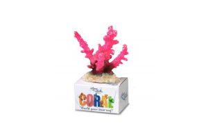 EBI Aqua Della Coral Module S Staghorn Coral Rosa