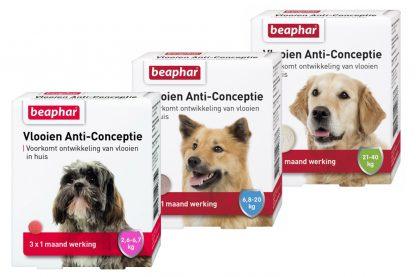 Beaphar Vlooien Anti-Conceptie tegen vlooien bij uw hond.
