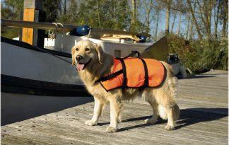 Beeztees veiligheidsvest en zwemvest