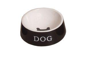 Keramiek bakken voor honden